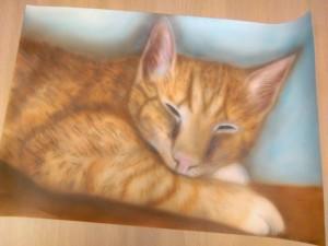 katportret